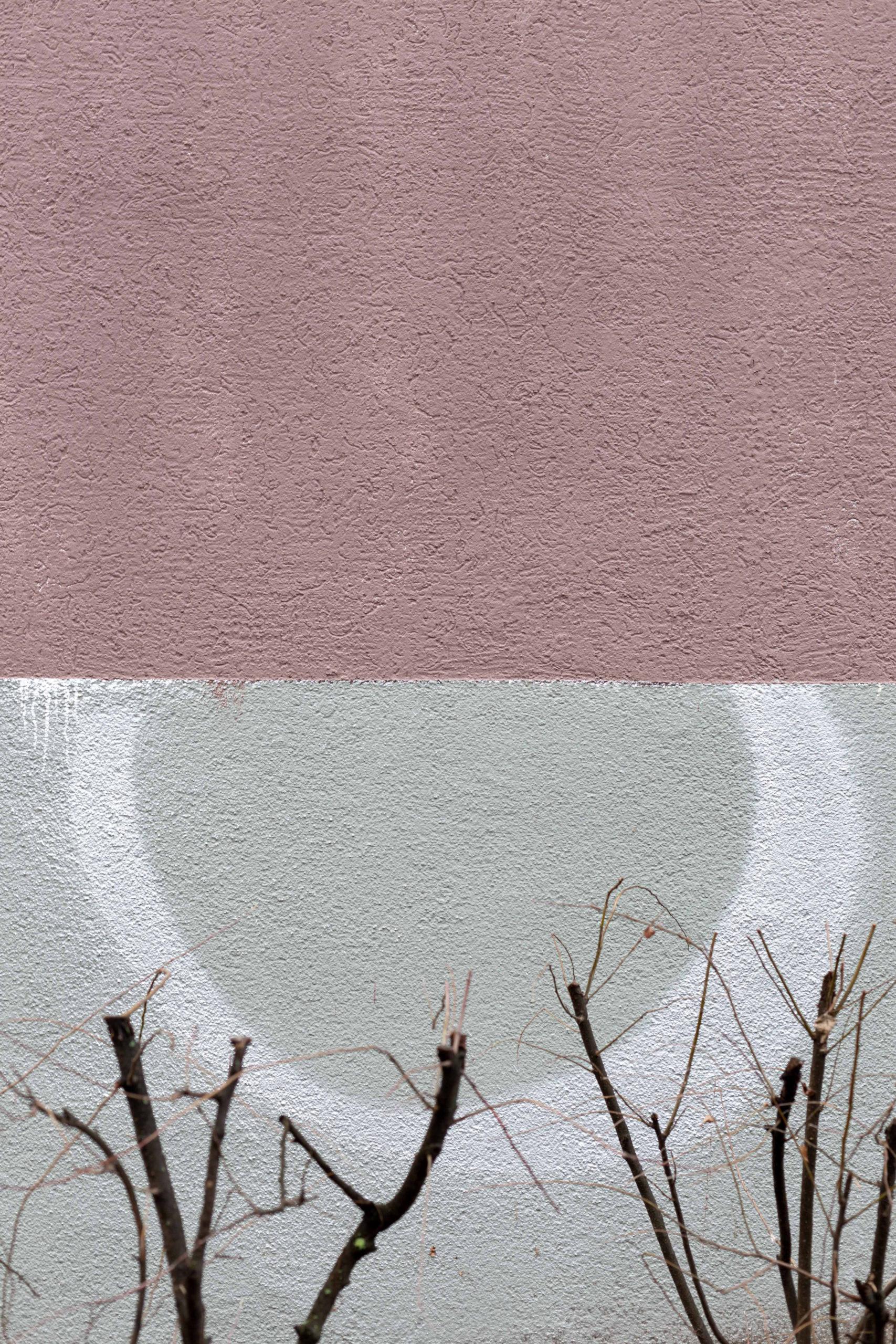 Kolorit_JennyHasselbach_IMG_2169_web